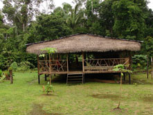 Shiripuno Lodge - Cabin