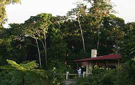 Tourist  Class - WildSumaco Lodge