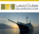 Luxury Cruises Galapagos